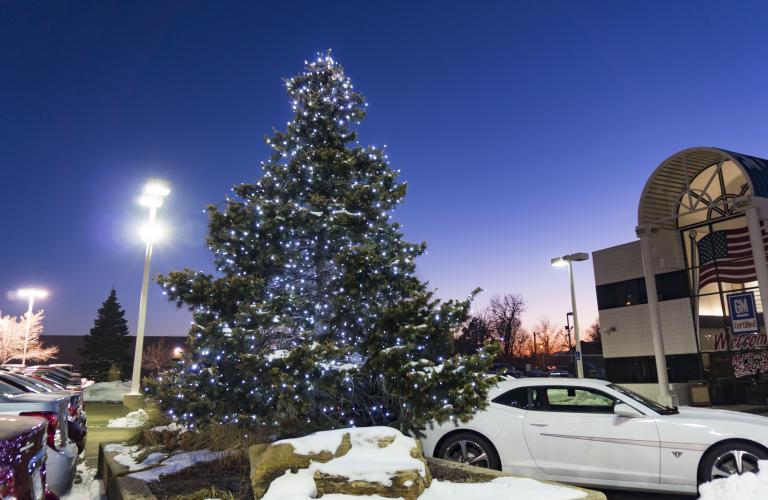 Pure white LED Christmas Tree at Ed Bozarth